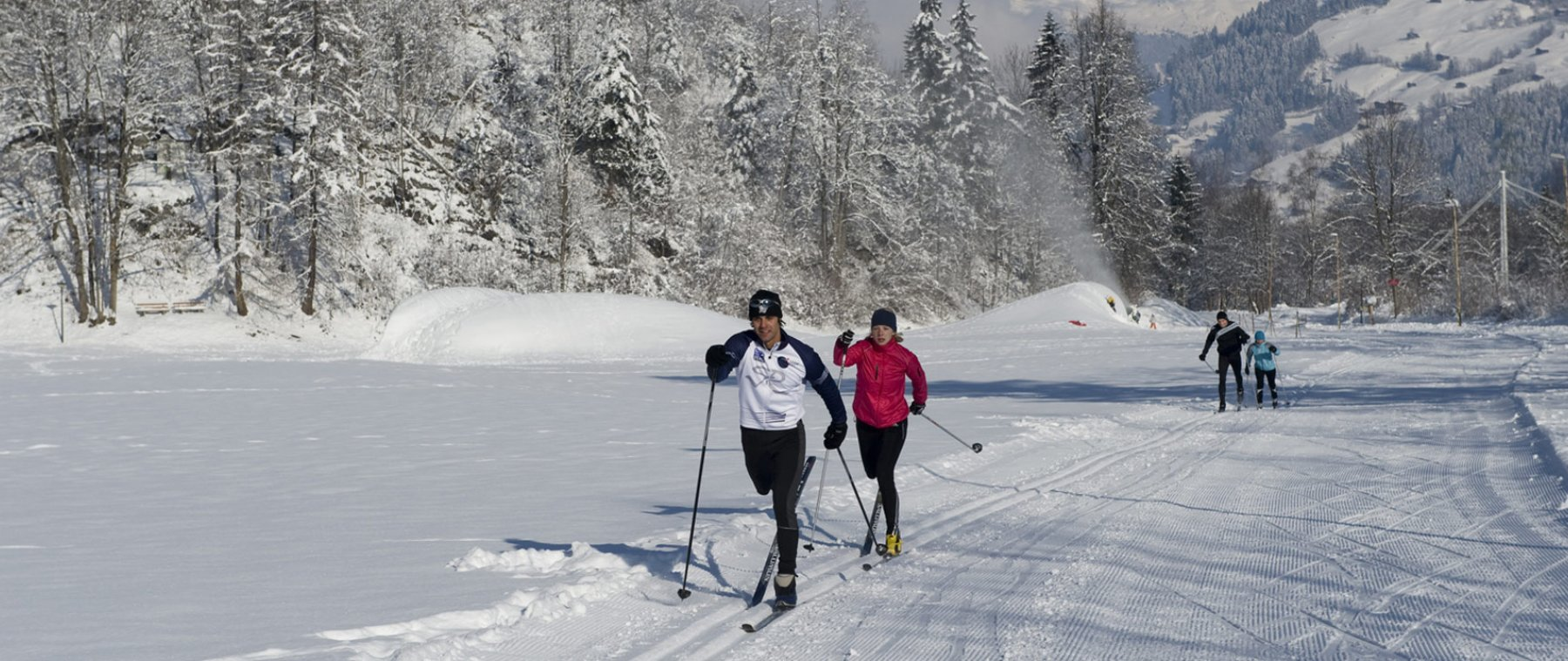 Cross country & Ice skating